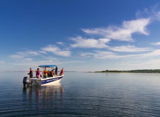 Båtutflykt från Strandby och Käringsund